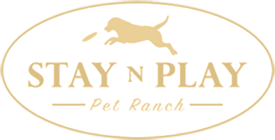 Stay N Play Pet Ranch